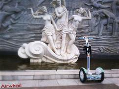 whoopi electric unicycle